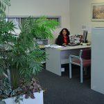 Female at desk in office